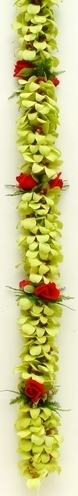 Double Green Orchid Red Rose | Specialty Orchid Leis