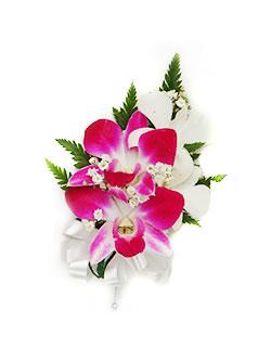 Orchid corsage ,  Lei Shop