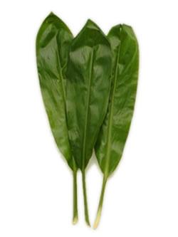 Green Ti Leaves,  Lei Shop