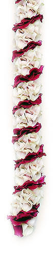 Specialty Orchid Leis,  Leilani Orchid