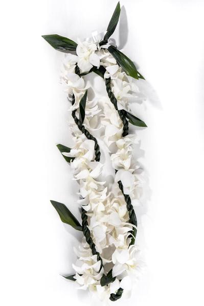 Single Ti Leaf White Orchid   | Graduation