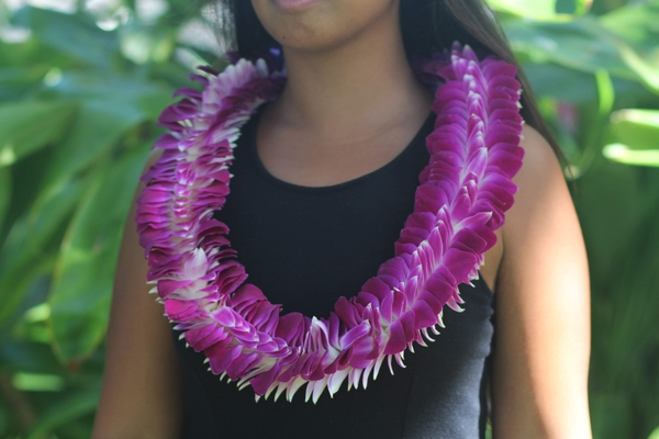 Specialty Orchid Leis, Sweetheart Orchid