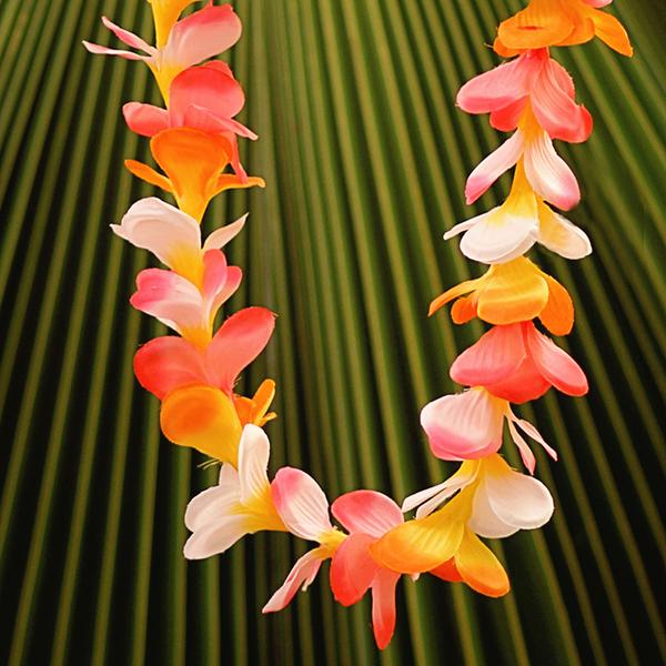 Everlasting Tri-Color Plumeria   Everlasting (Artificial)