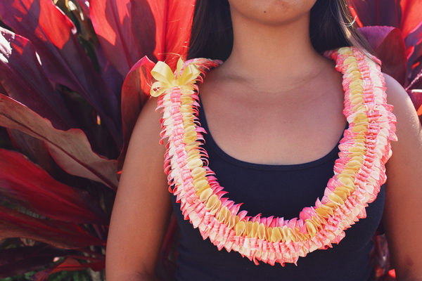Pink Yellow Butterfly | Specialty Orchid Leis