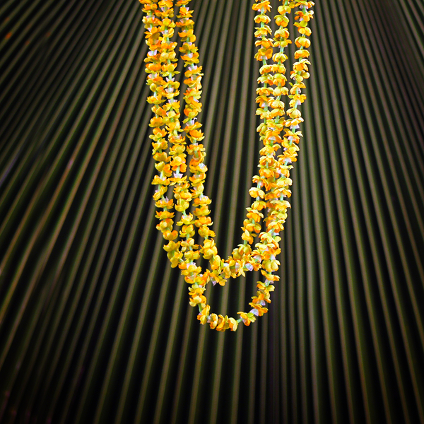 Everlasting 3 Strand Pakalana | Everlasting (Artificial)