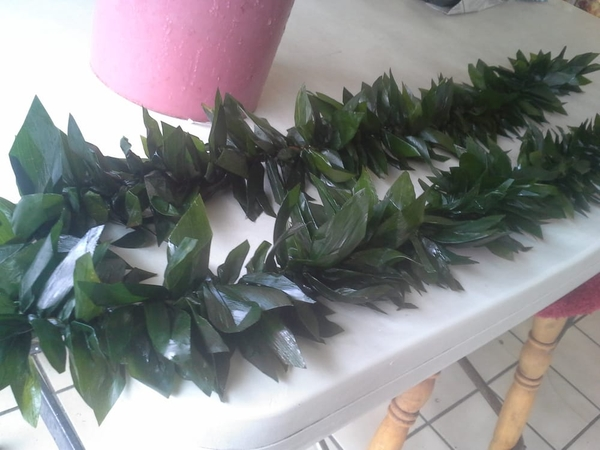 Ti Leaf Maile Style Lei | Wedding Leis for Kane (Men)