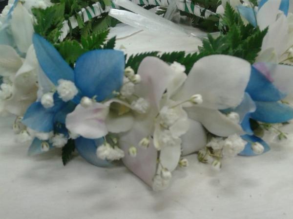 Blue & White Orchid Haku | Haku
