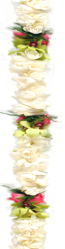 Double Tuberose Green Orchid & Rose | Cindy's Fragrant Leis