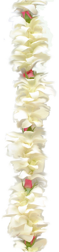 Single White Orchid  Pink Rose | Wedding Leis For Women