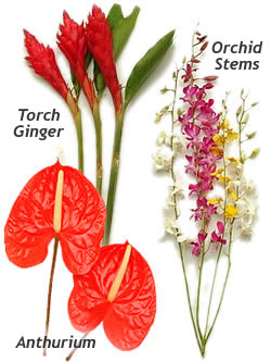 Cut Flower Selection,  Lei Shop
