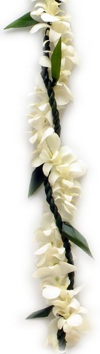 Single Ti Leaf White Orchid   | Wedding Leis for Kane (Men)