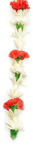 Hawaiian Leis, Tuberose Carnation Lei