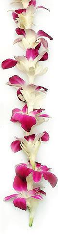 Hawaiian Leis, Tuberose Lavender Orchid Lei