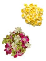 Image Loose Flowers