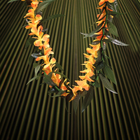 Image Everlasting Maile Orange Plumeria