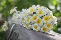 Image Bouquets