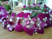 Image All Purple Orchid Haku