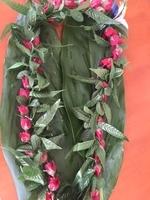 Image Everlasting Rose Ti Leaf