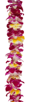 Image Single Orchid with Plumeria