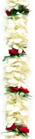 Image Double White Orchid Red Rose